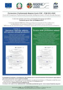 manifesto-3-70x100-4