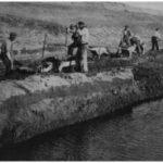 Maccarese-Scavo-di-un-Canale-1926-A-300x218