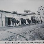 magazzini 1927